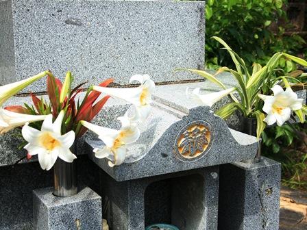 墓 白百合