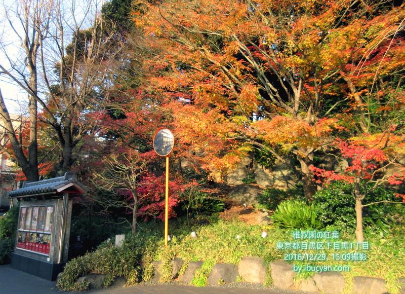 雅叙園の紅葉