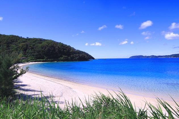 「倉崎海岸」の画像検索結果